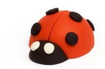 ladybug_family